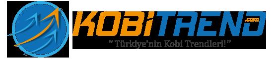 Türkiye'nin Kobi Trendleri